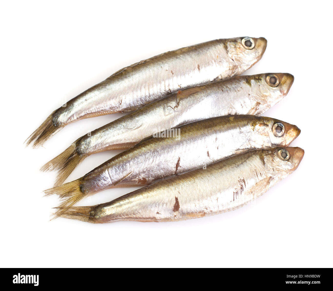 Marinated anchovies isolate on a white background - Stock Image