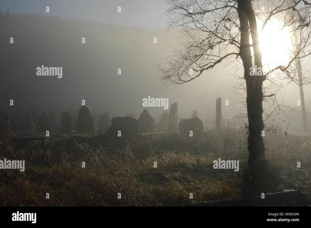 Standing stone maze in the mist Stock Photo
