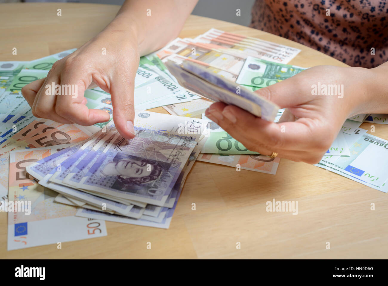 Person counting holiday currency-UK Pounds Sterling and Euros - Stock Image