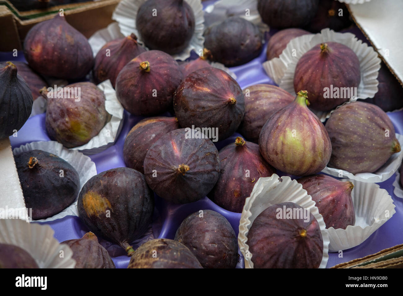 Fresh Figs ,(Ficus Carica)-A great source of fibre and full of vitamins and minerals.Figs are rich in minerals including - Stock Image
