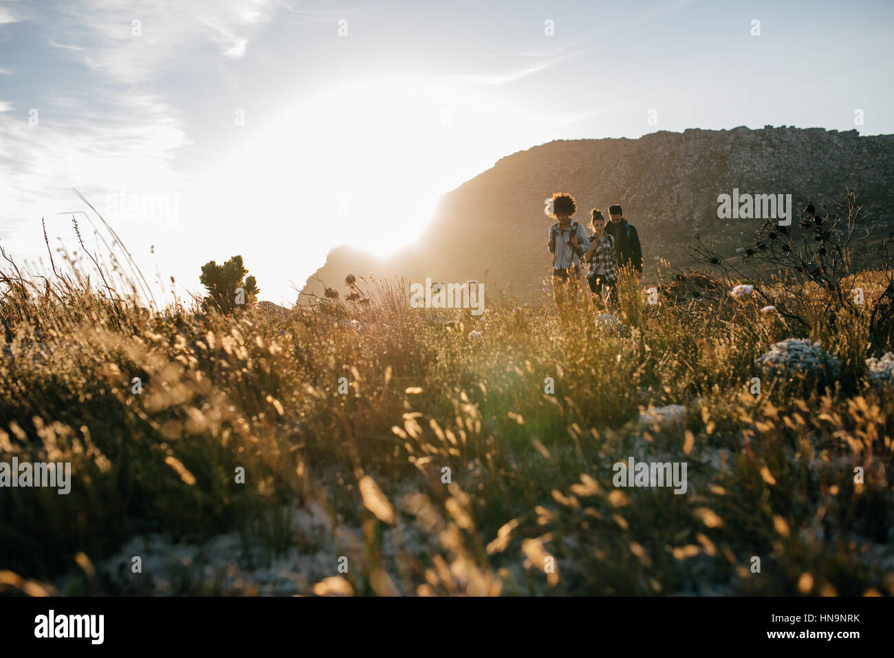 Young people walking in countryside. Group of friends are hiking in nature on a sunny day. - Stock Image