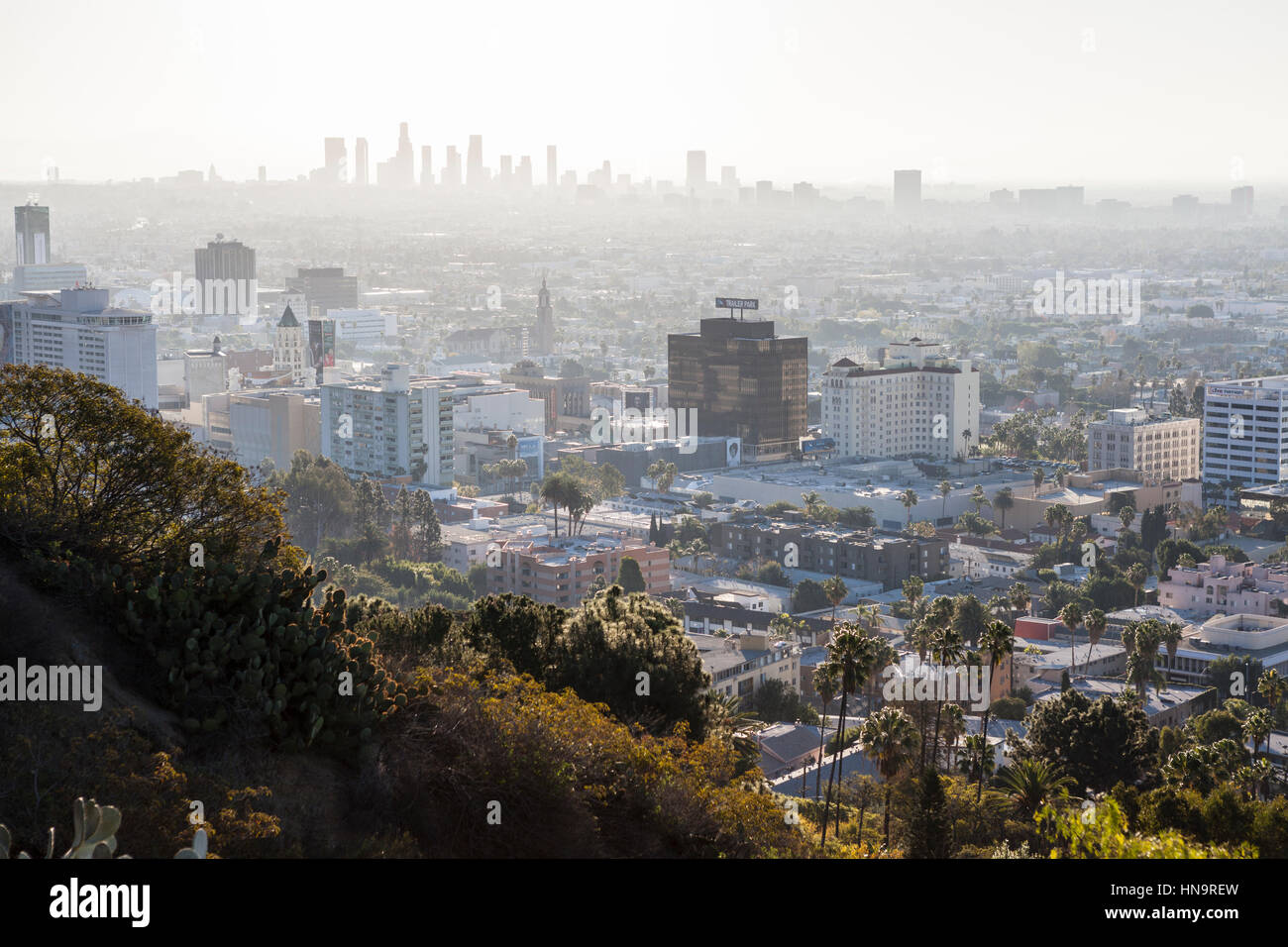 Hollywood, California, USA - January 1, 2015:  Smoggy haze filled morning sky above Hollywood and downtown Los Angeles - Stock Image