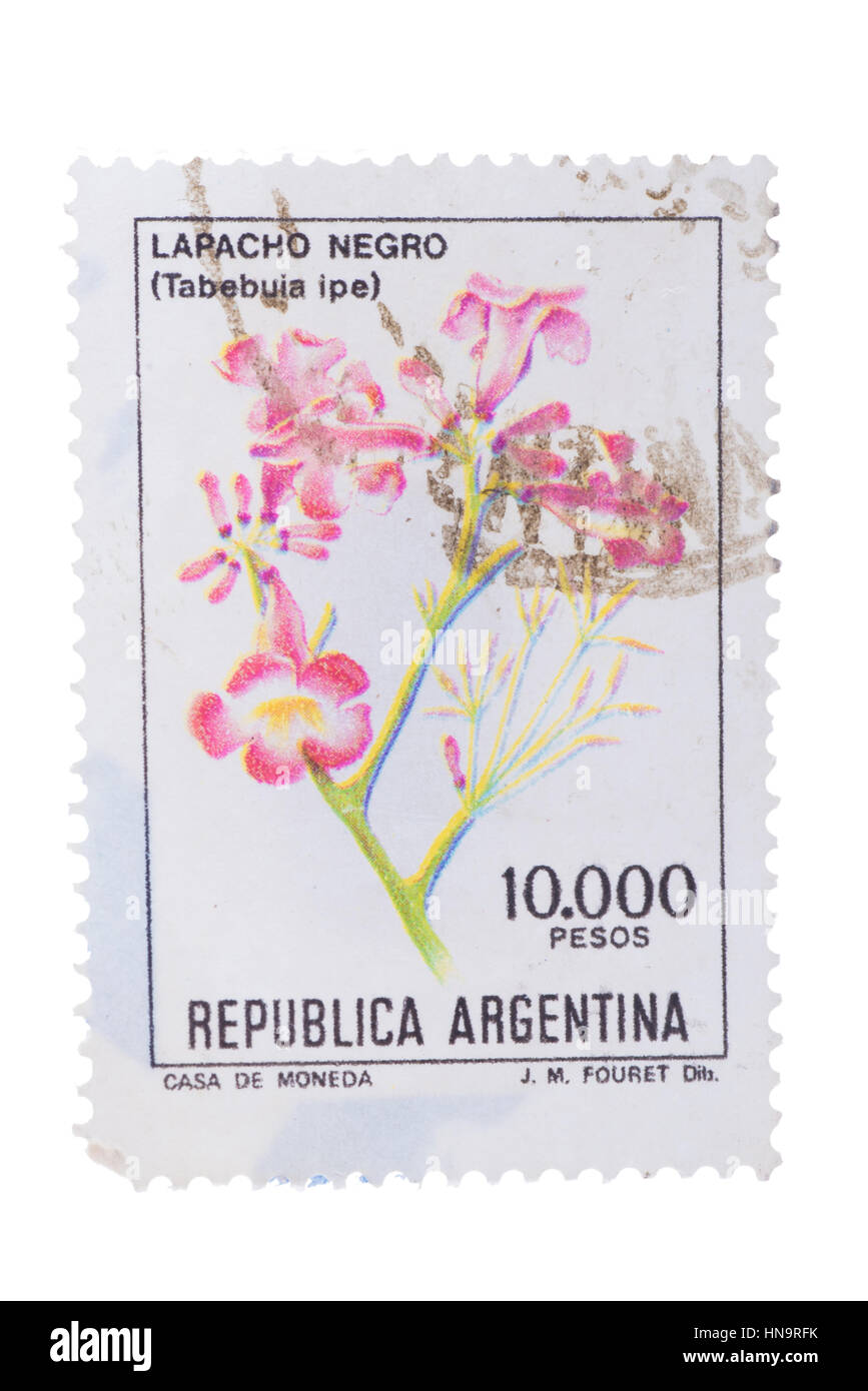 RGENTINA - CIRCA 1983: a stamp printed in the Argentina shows Pi - Stock Image