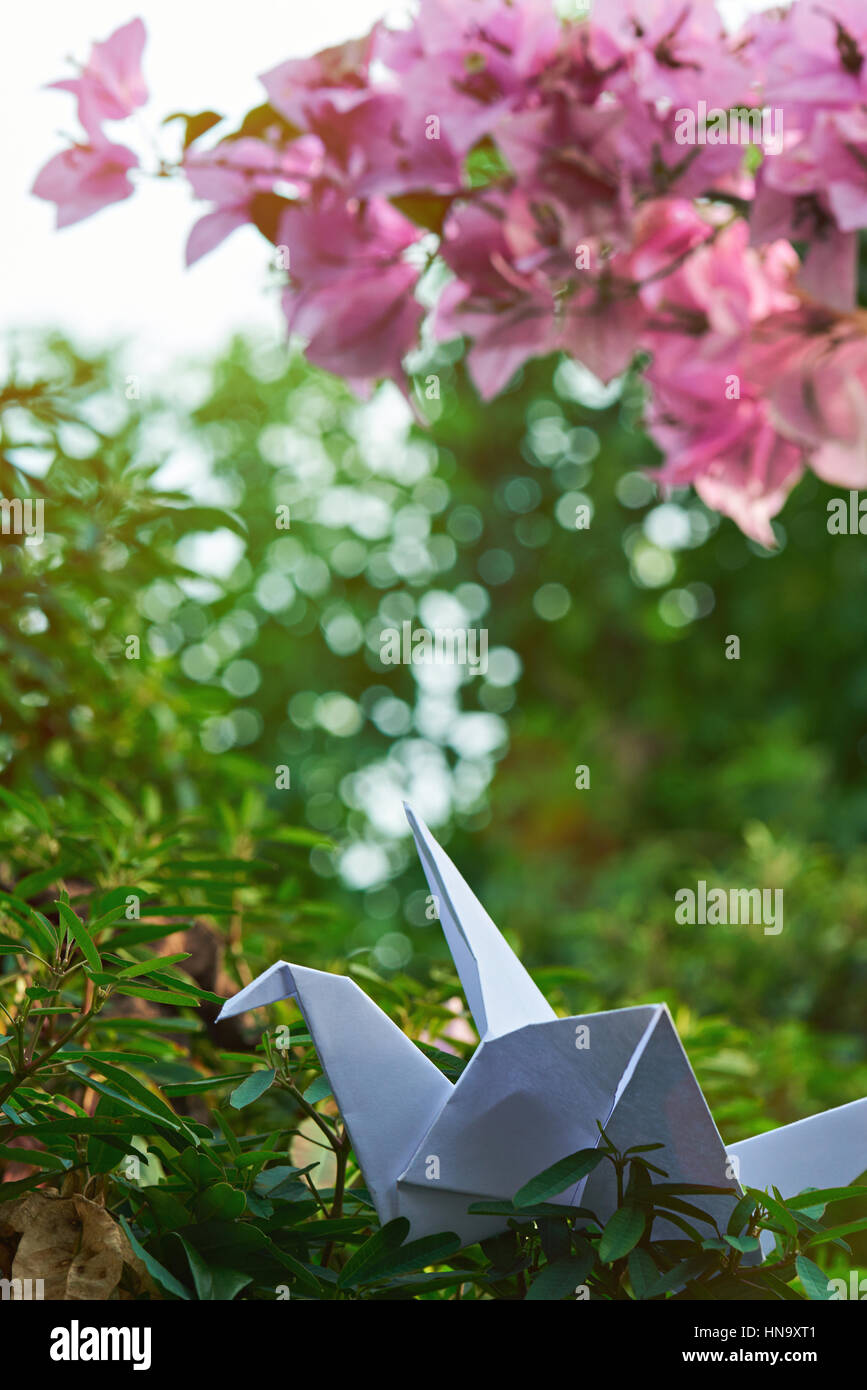 Cranes Origami Composed Of Paper Of Different Colors. Cranes Are ... | 1390x868