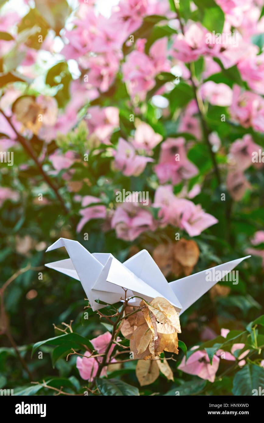 White Paper Crane On Nature Stock Photos White Paper Crane On