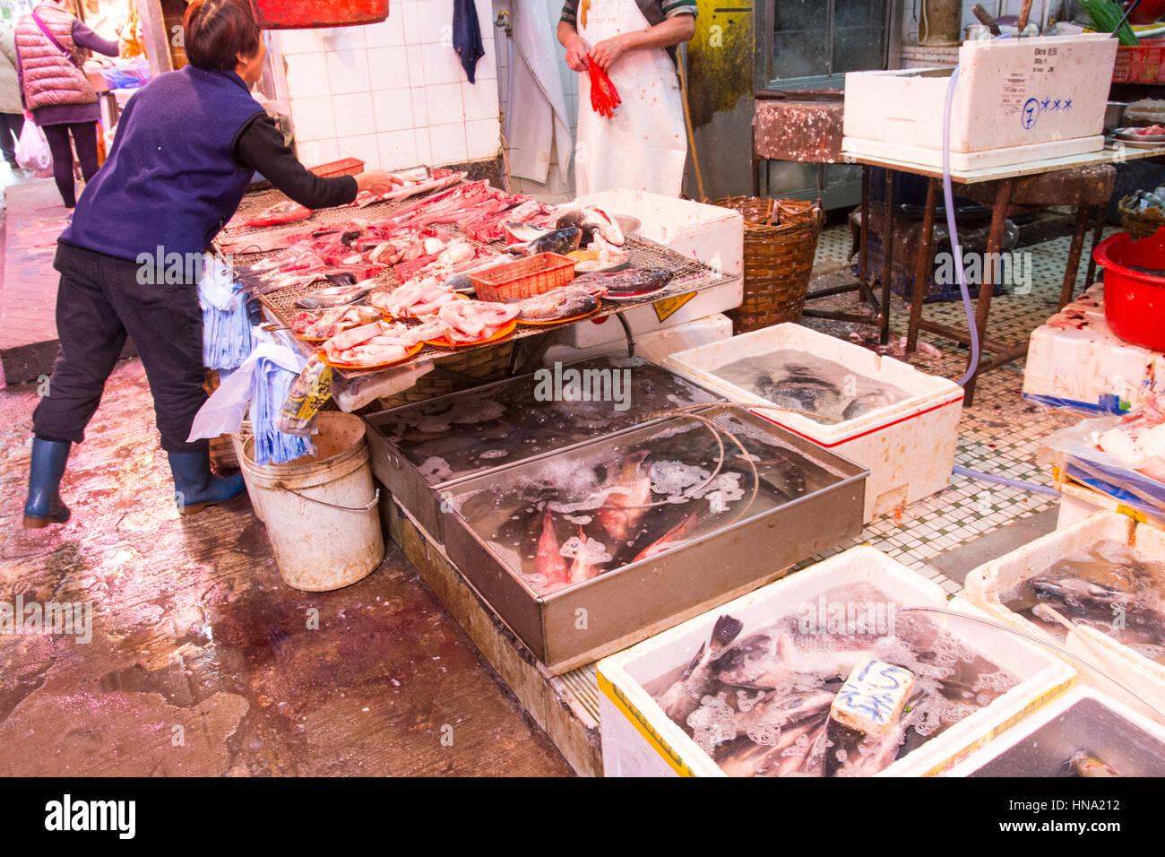fresh fish market in Hong Kong - Stock Image