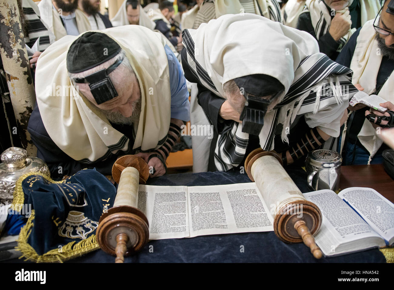 Two orthodox religious Jewish men at a Torah reading at morning services in a synagogue in Crown Heo9ghts, Brooklyn, - Stock Image