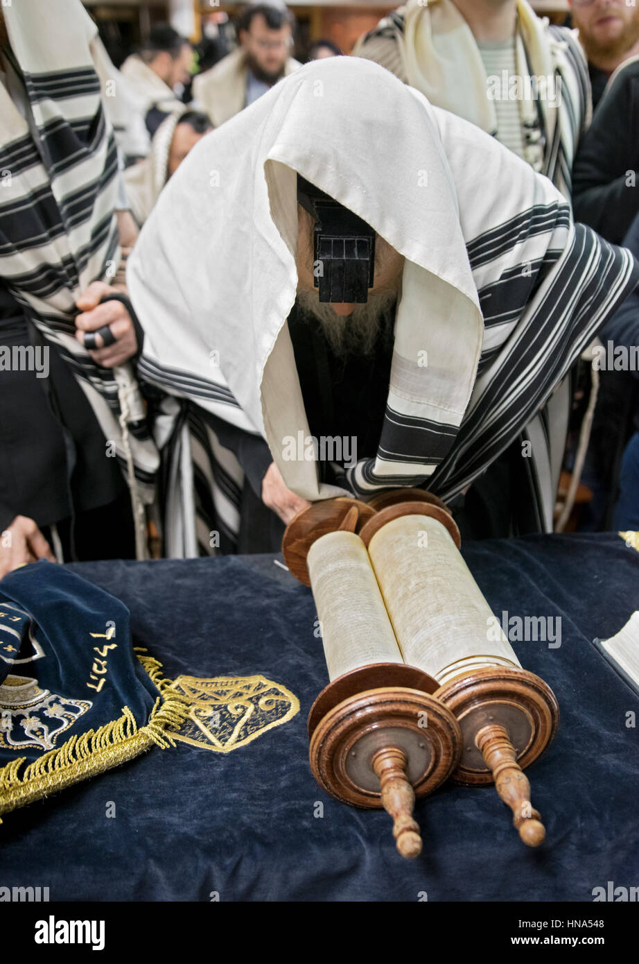At orthodox Jewish morning services, a man called to the Torah makes a blessing before hearing a reading. In Brooklyn, - Stock Image