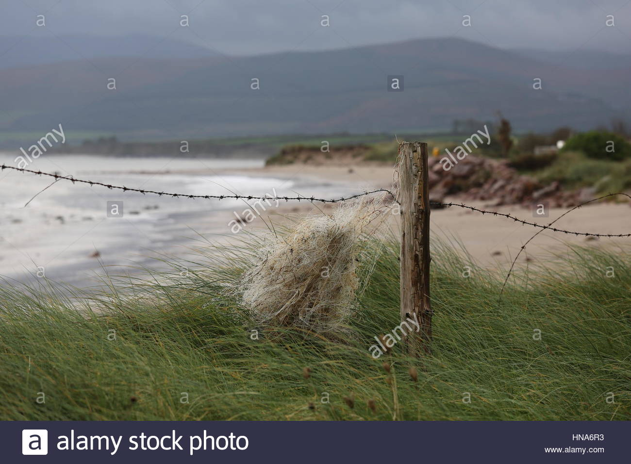 Ireland in all its beauty: - Stock Image