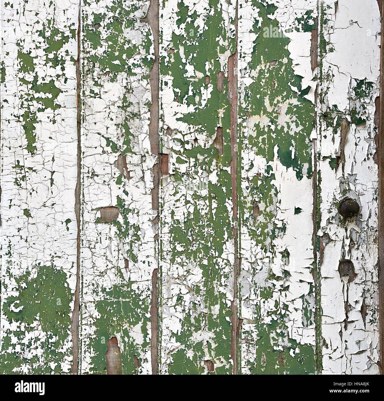 Weathered and peeling paint on a old timber door - Stock Image