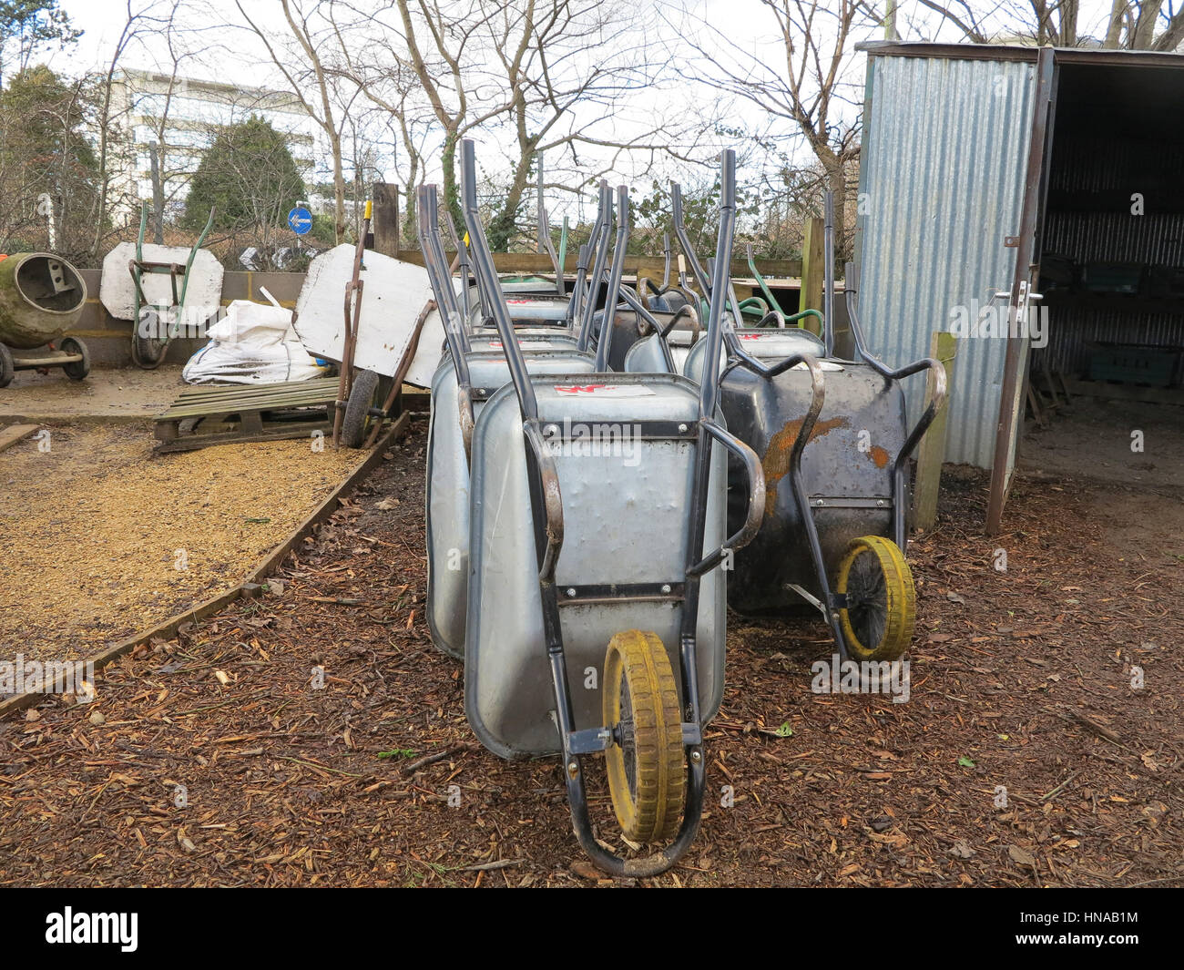 Row of steel wheelbarrows in school garden - Stock Image