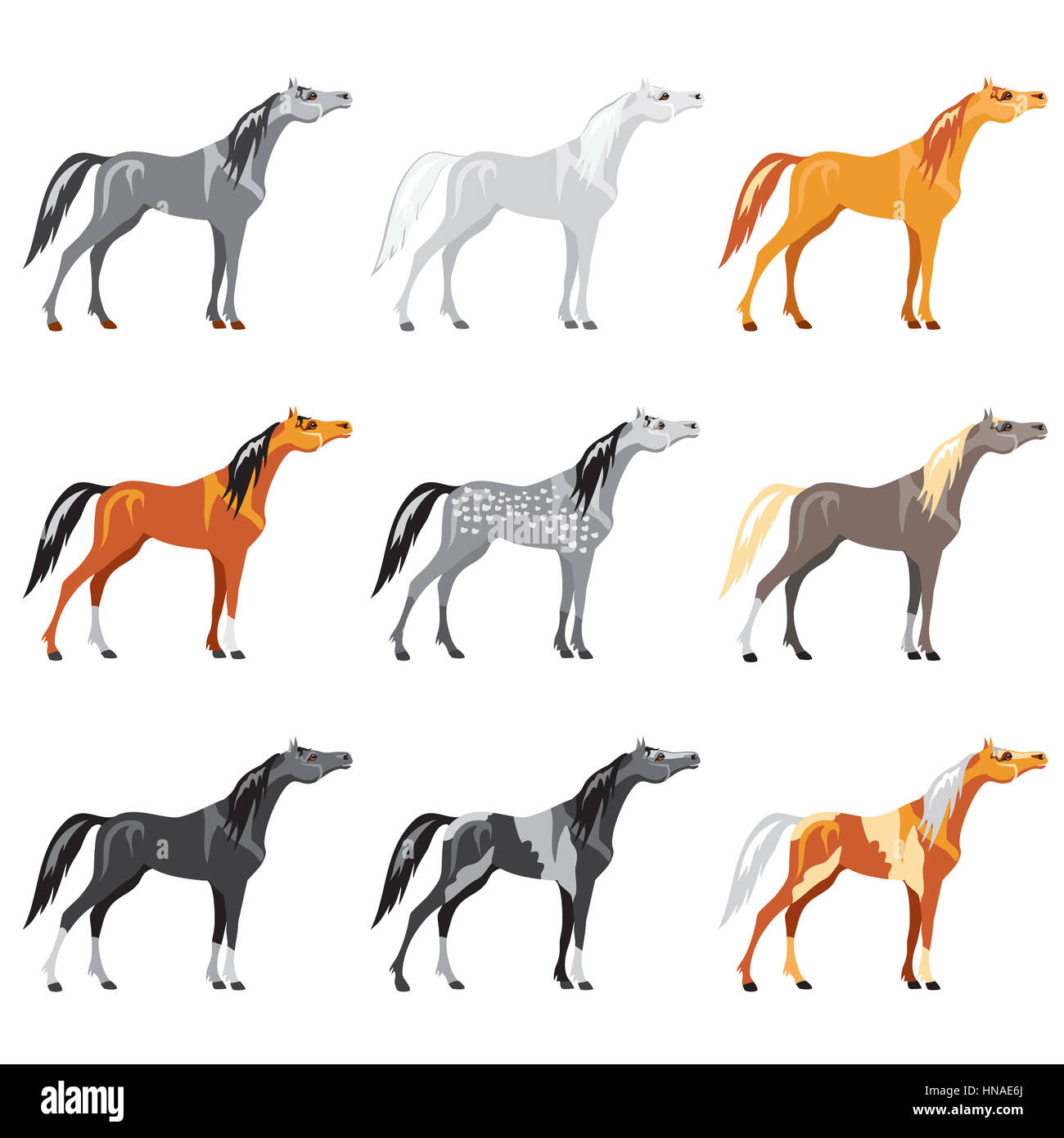 Vector illustrated Set of colorful  horses - Stock Image