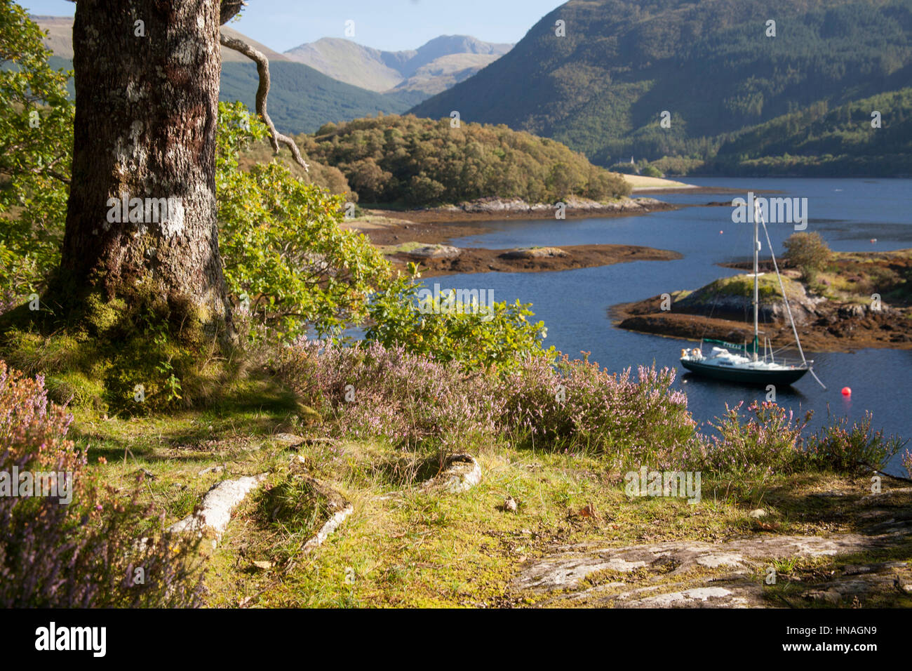 Yachts at anchor in Bishops bay on Loch Leven, Ballachulish, West Highlands - Stock Image