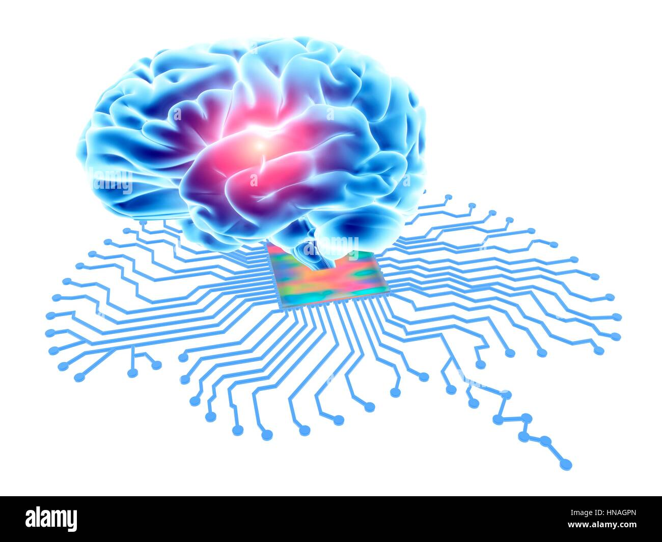 Printed Circuit Board Cut Out Stock Images Pictures Alamy Is The Central Pcb In Many Modern Computers Brain Shaped With Processor And Human Conceptual Computer Artwork Depicting