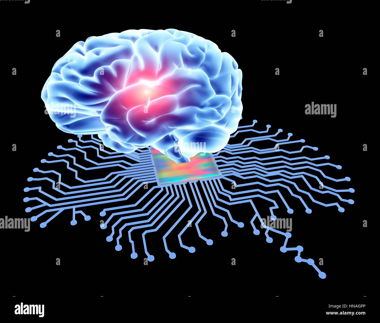 Brain shaped printed circuit board with central processor and human ...
