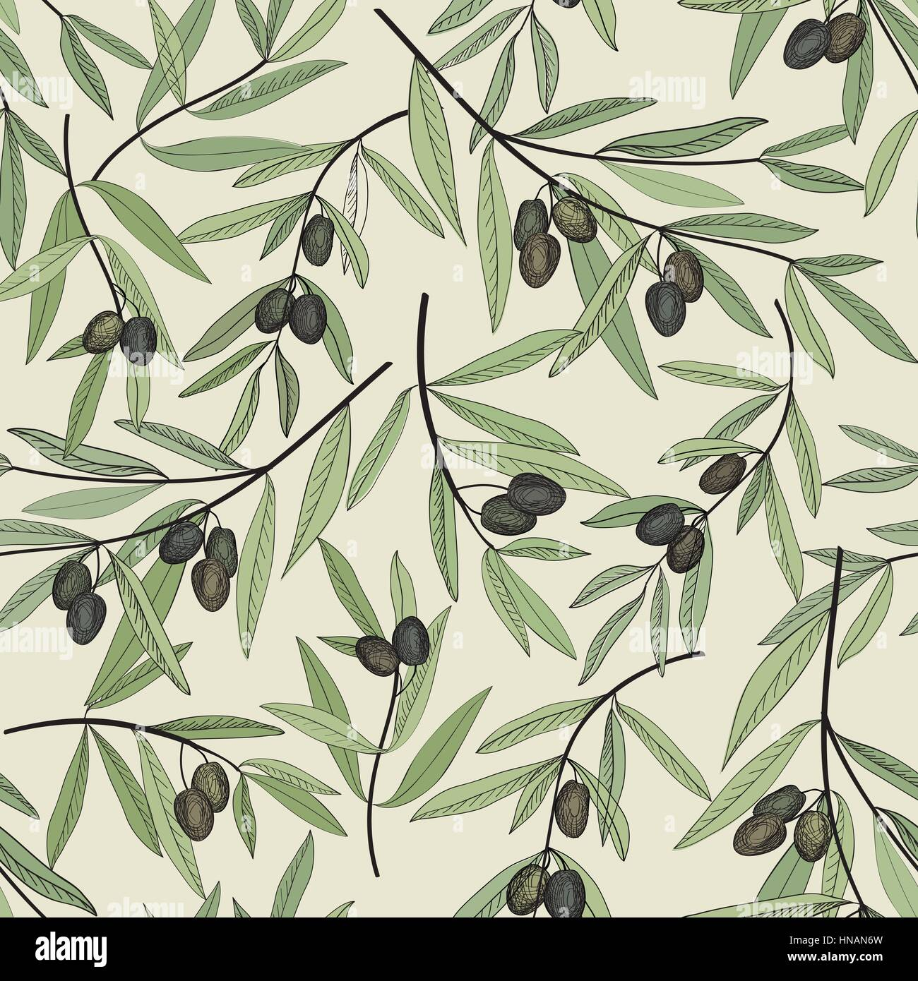 Olive Branch Crown Stock Photos & Olive Branch Crown Stock Images ...