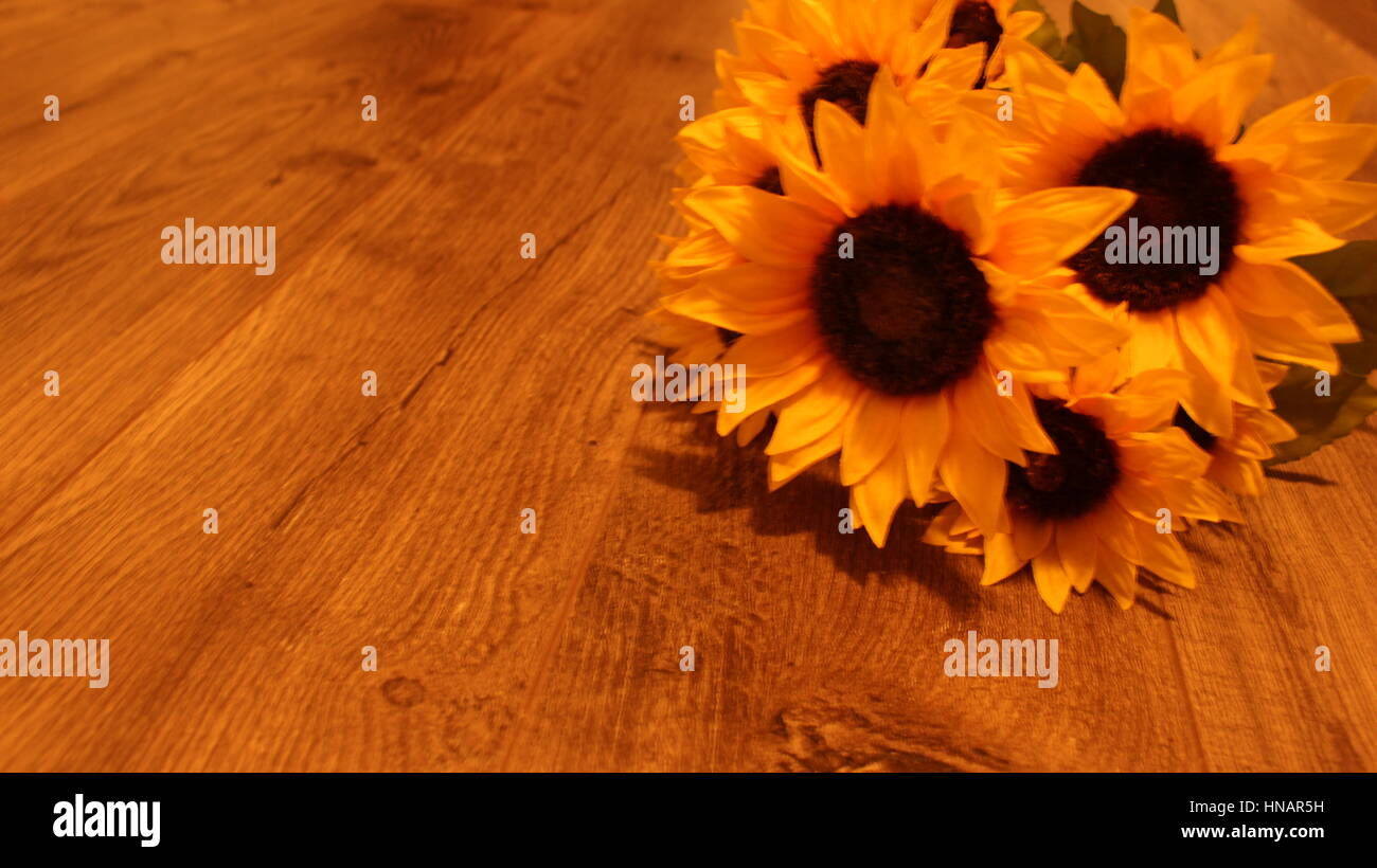 A warm picture of sunflowers on a hardwood floor - Stock Image