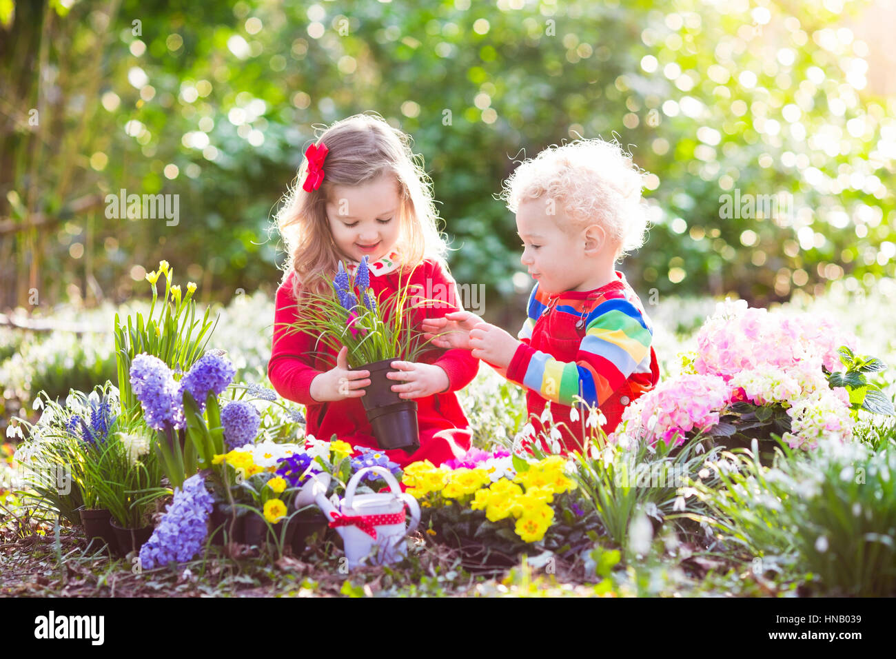 Children planting spring flowers in sunny garden little boy and children planting spring flowers in sunny garden little boy and girl gardener plant hyacinth daffodil snowdrop in flower bed gardening tools and w mightylinksfo