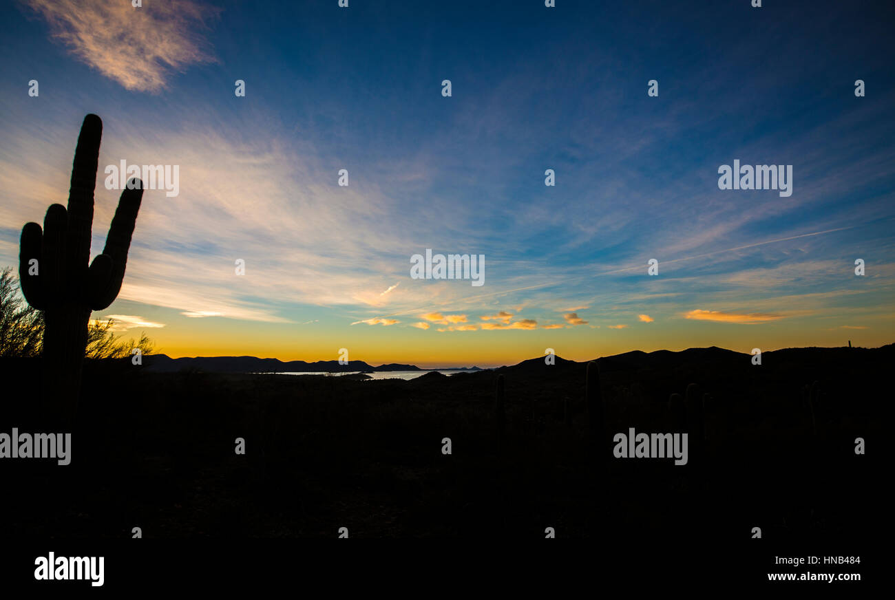 Magnificent morning desert sunrise rising over the mountains and a lake with a saguaro cactus silhouetted in the - Stock Image