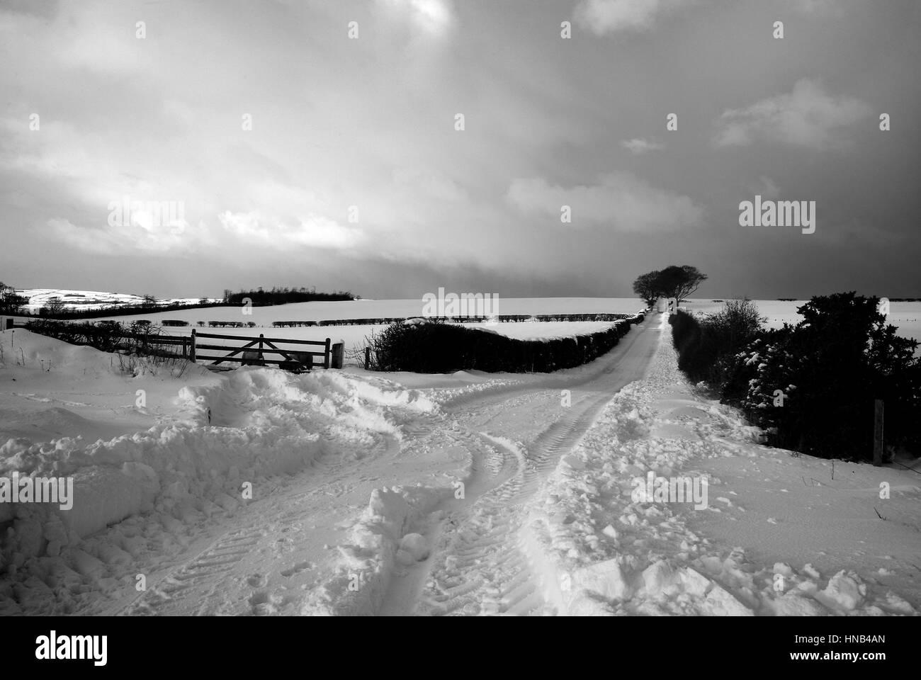 Black and White Landscape - heavy snowfall in Berwickshire, Scotland - Stock Image