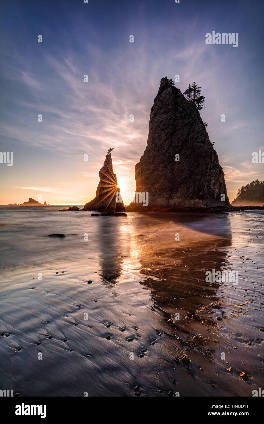 The Coastline of Olympic National Park in Washington State is really beautiful with its rugged , wild beaches and Stock Photo