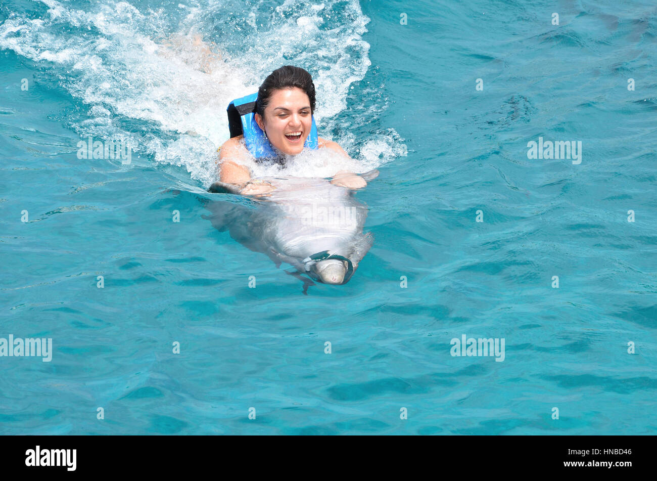 dolphin ride therapy for young woman in pool Stock Photo