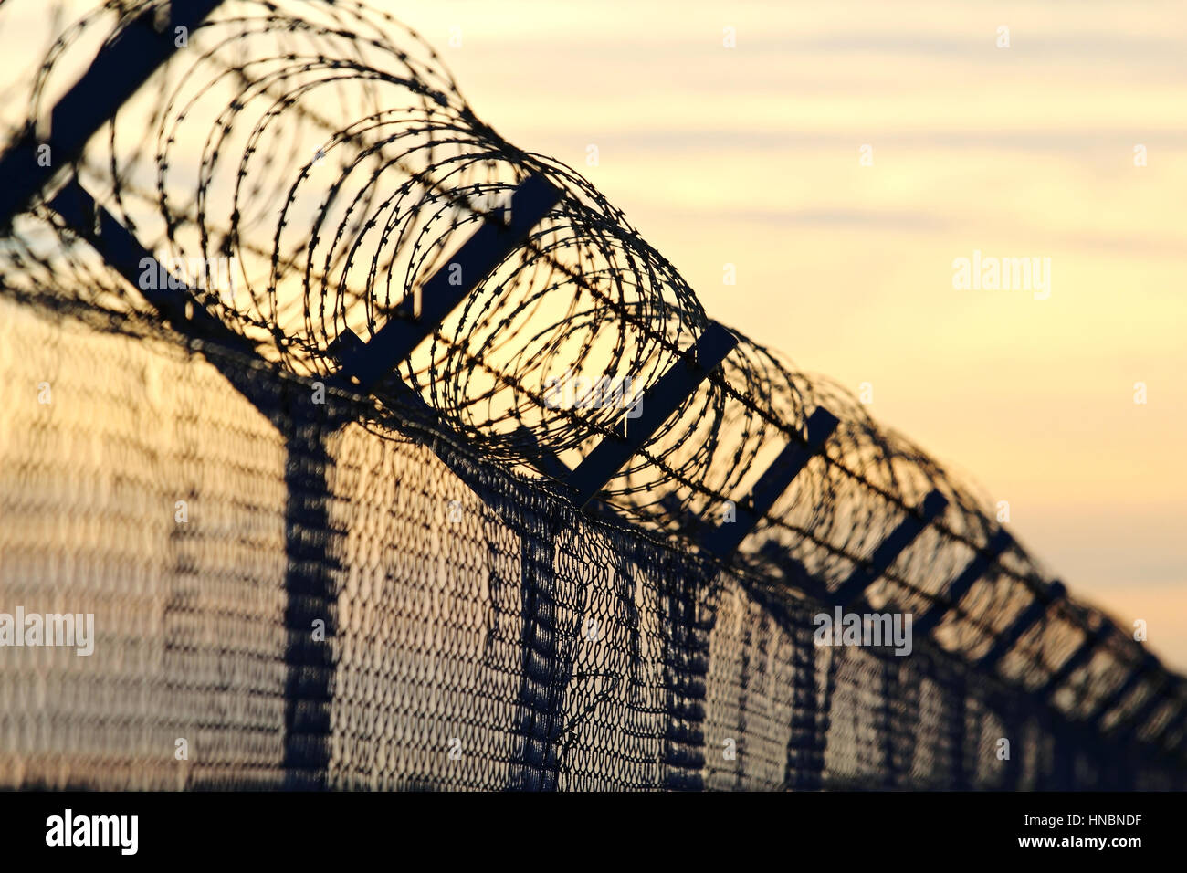 Wall With Barb Wire Stock Photos Amp Wall With Barb Wire