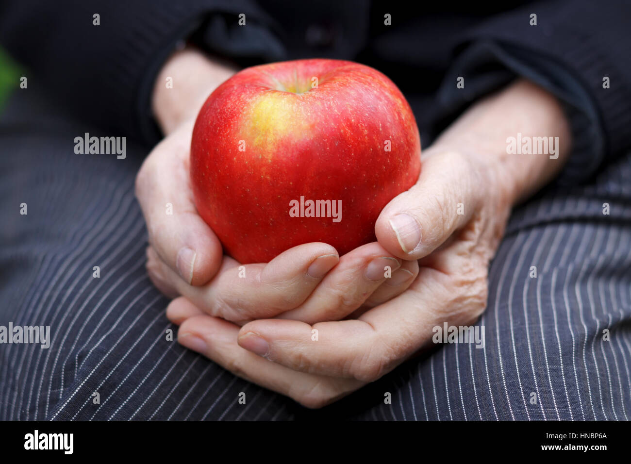 Close up of wrinkled hands holding an apple - Stock Image