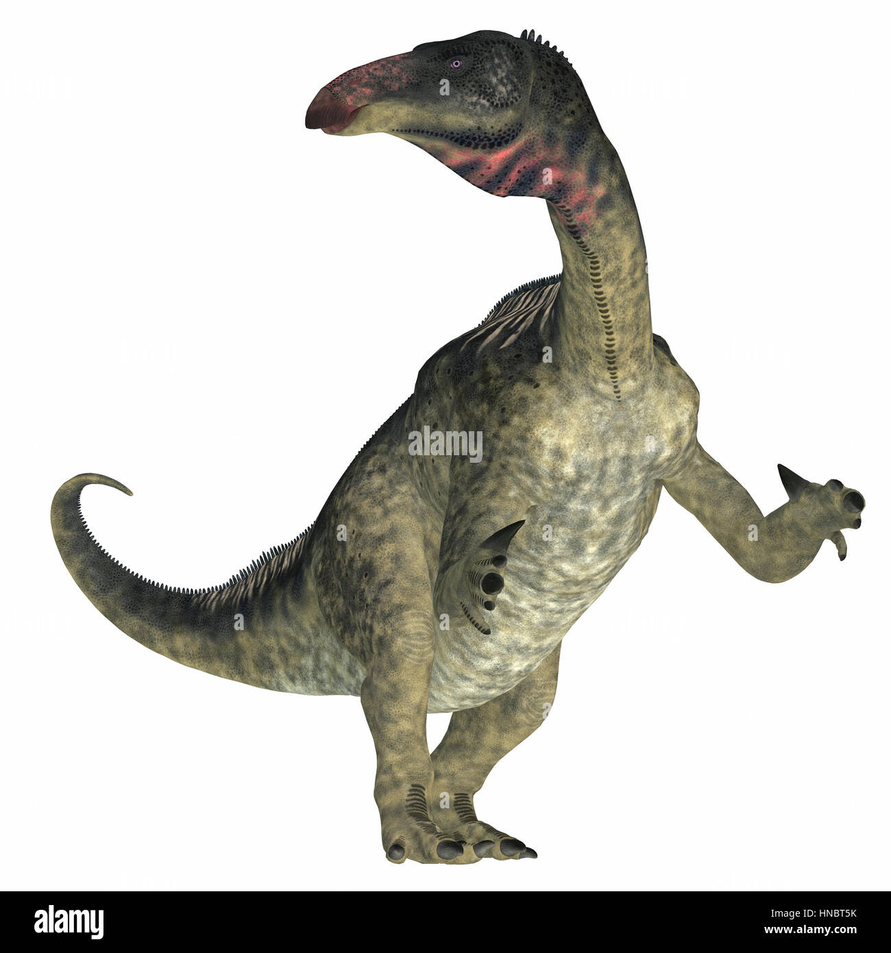 Lurdusaurus was a herbivorous ornithopod iguanodont dinosaur that lived in Niger in the Cretaceous Period. - Stock Image