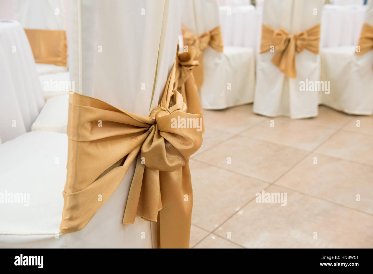 Wedding chairs with tied bows - Stock Image