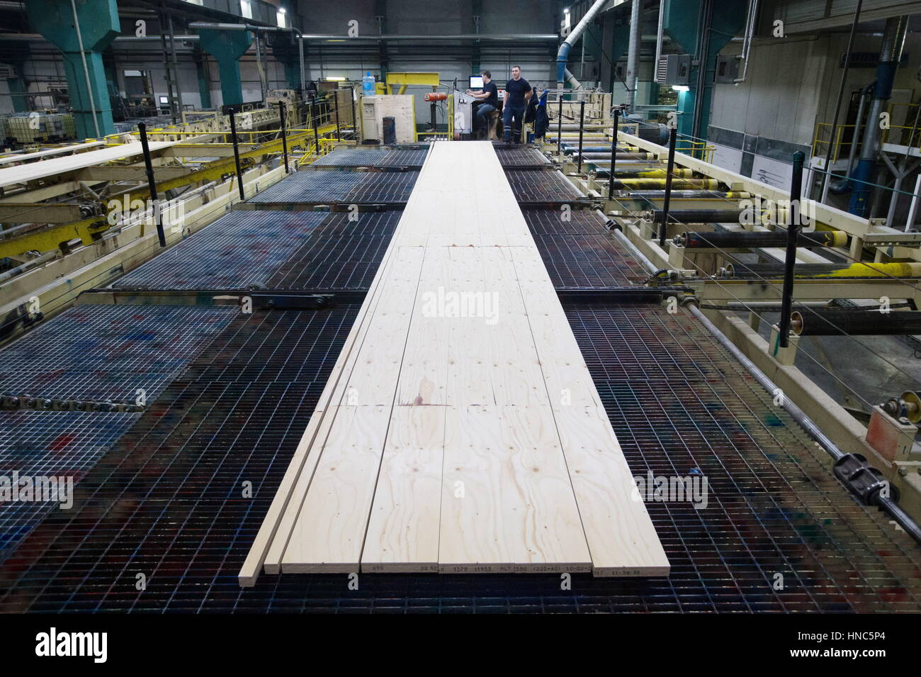 Torzhok, Tver Region, Russia. 10th Feb, 2017. Processing wood at the Talion Arbor high-technology timber plant launched - Stock Image