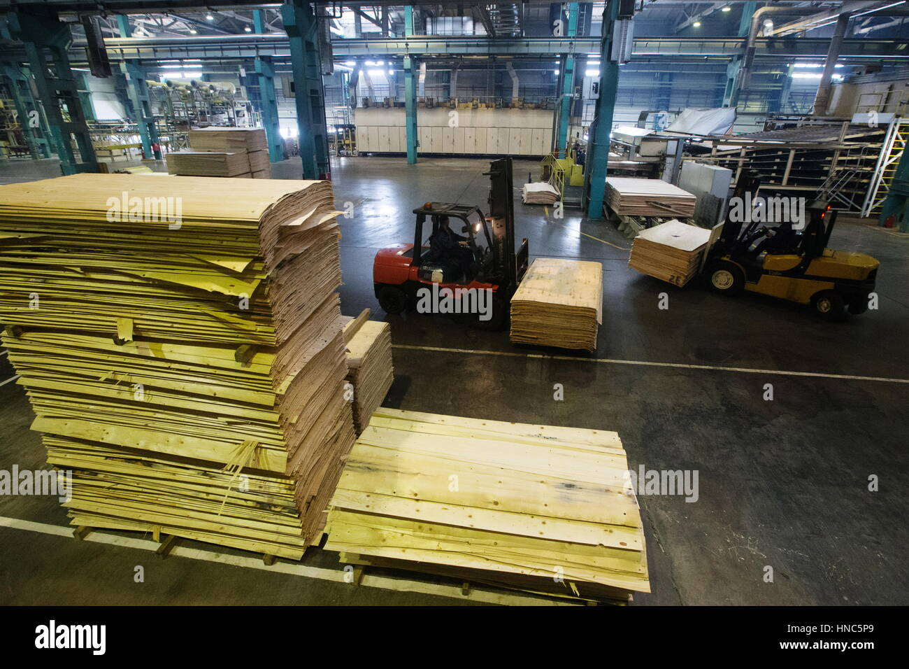 Torzhok, Tver Region, Russia. 10th Feb, 2017. Producing veneer at the Talion Arbor high-technology timber plant - Stock Image