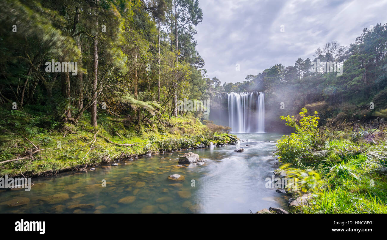 Waterfall, Rainbow Falls or Waianiwaniwa, Kerikeri River, Northland, North Island, New Zealand - Stock Image