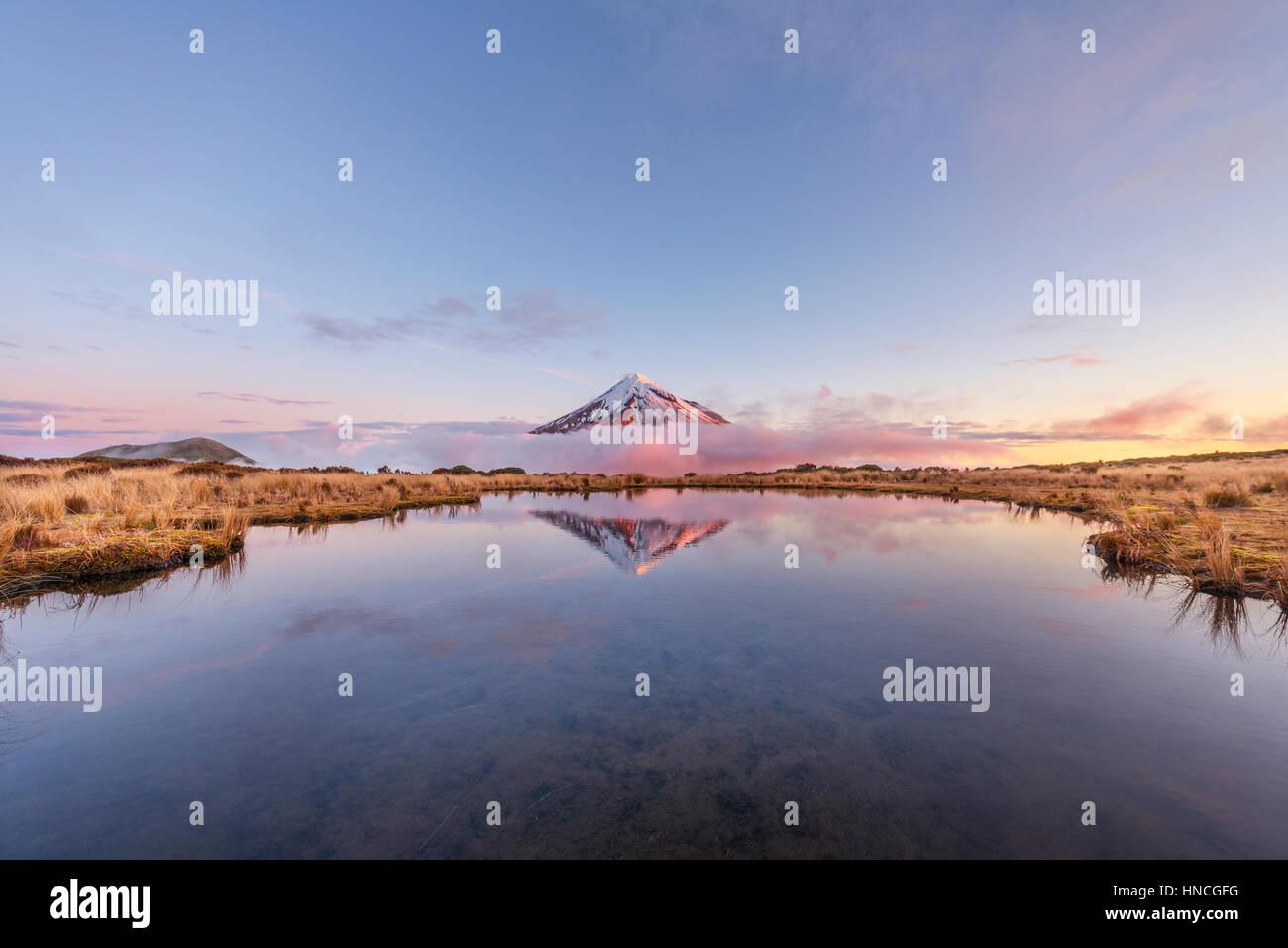 Reflection in Pouakai Tarn lake, pink clouds around stratovolcano Mount Taranaki or Mount Egmont at sunset, Egmont - Stock Image