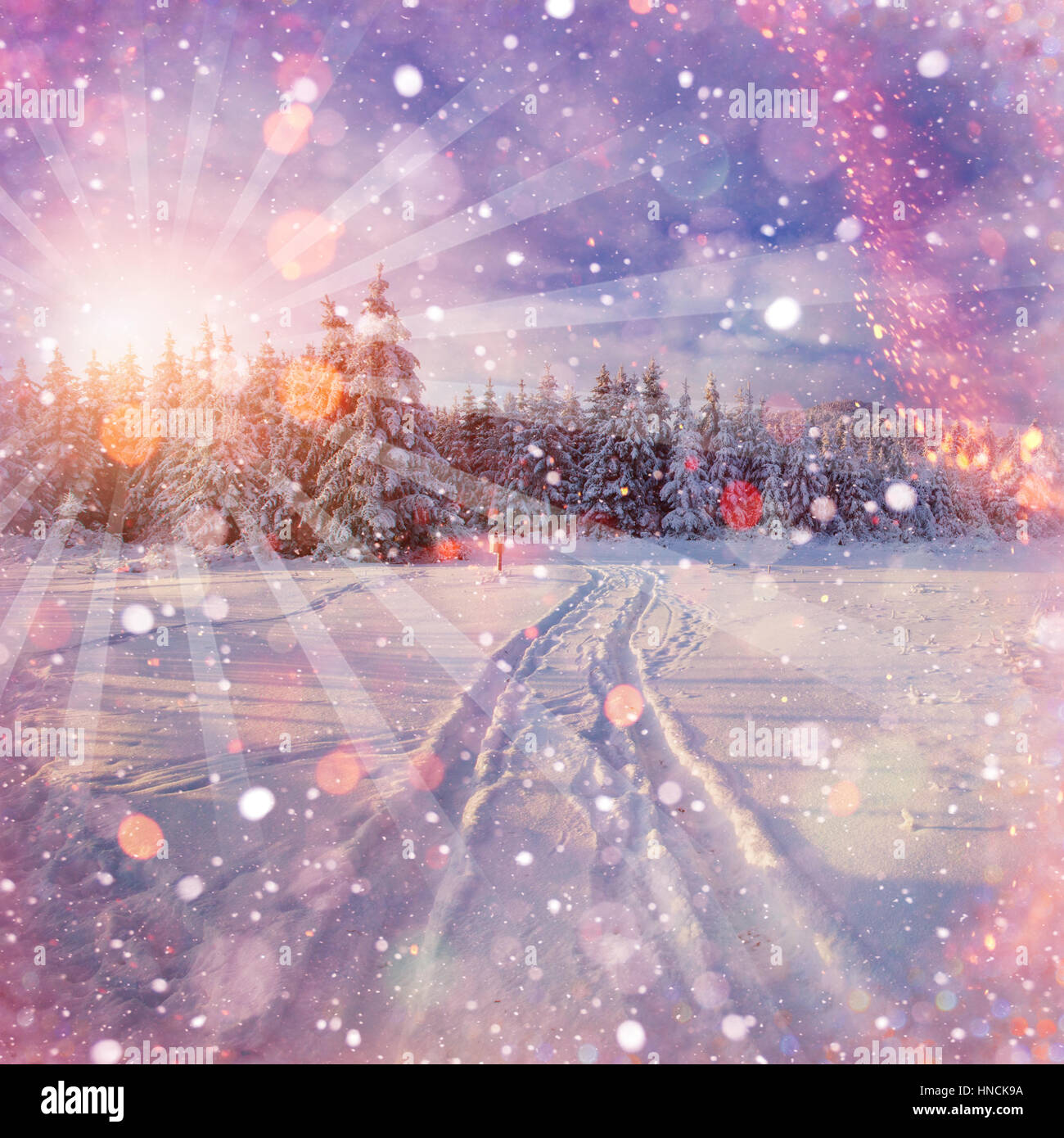winter road. Beautiful color high-res illustration with a holida - Stock Image
