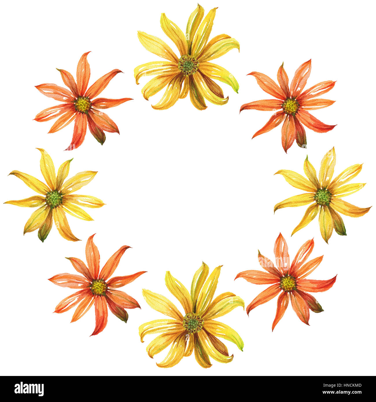 Watercolor Wreath Yellow And Orange Daisy Flowers Stock Photo