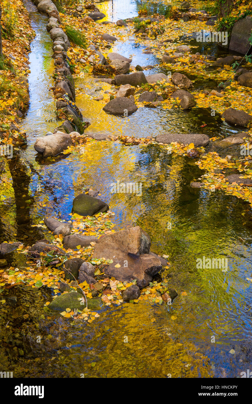 Water reflections in Autumn. Rascafria, Madrid province, Spain. - Stock Image