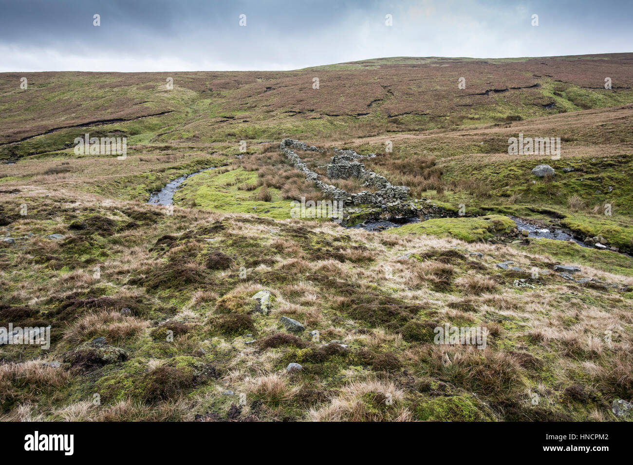 Sargill Fold, a derelict washfold on Stags Fell, Yorkshire Dales, formerly used for washing sheep. Located on unenclosed Stock Photo