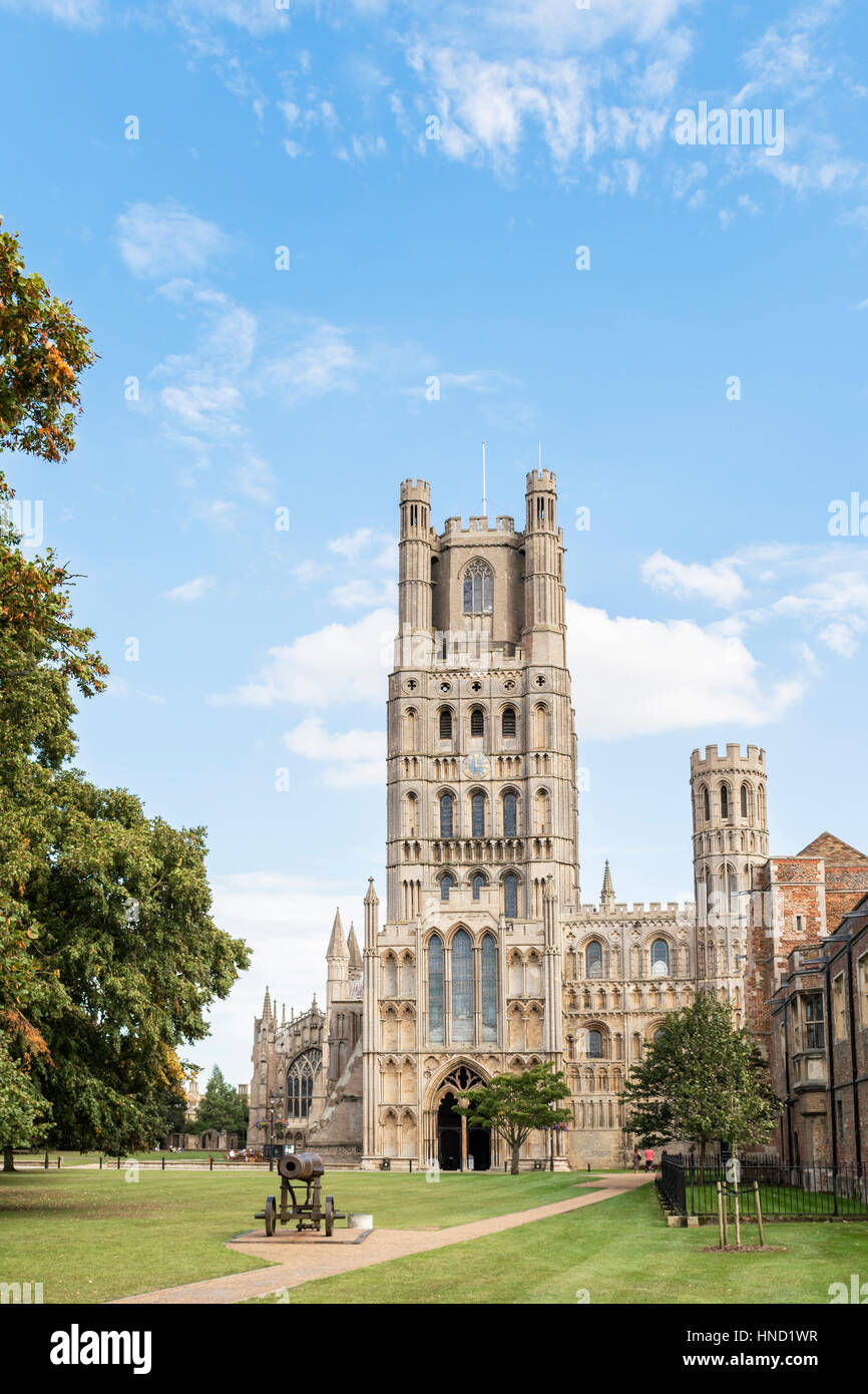 Ely cathedral, Cambs UK - Stock Image