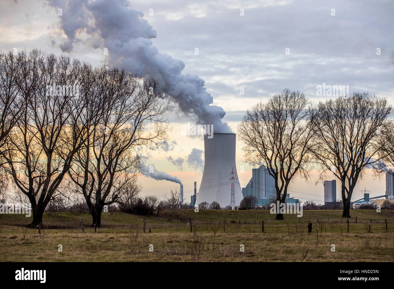 Cooling tower of coal power plant  Duisburg Walsum, Block 10, Germany, - Stock Image