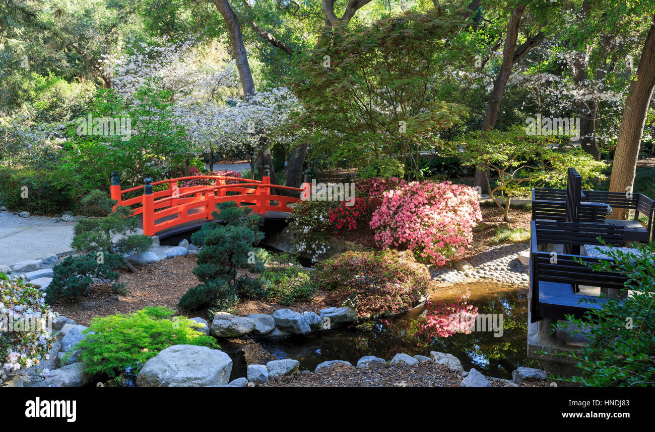 Beautiful Japanese Garden At Descanso Garden, Los Angeles ...