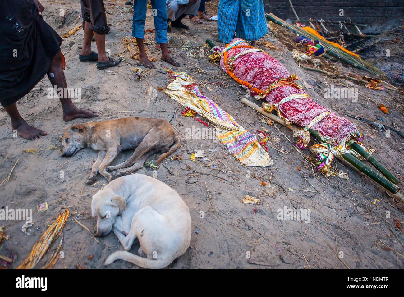 Body waiting to be burn, in Manikarnika Ghat, the burning ghat, on the banks of Ganges river, Varanasi, Uttar Pradesh, - Stock Image