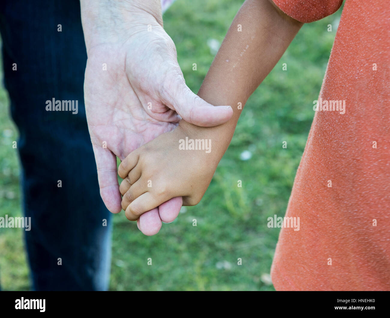 Diversity: old and young hands. Adoption contest - Stock Image