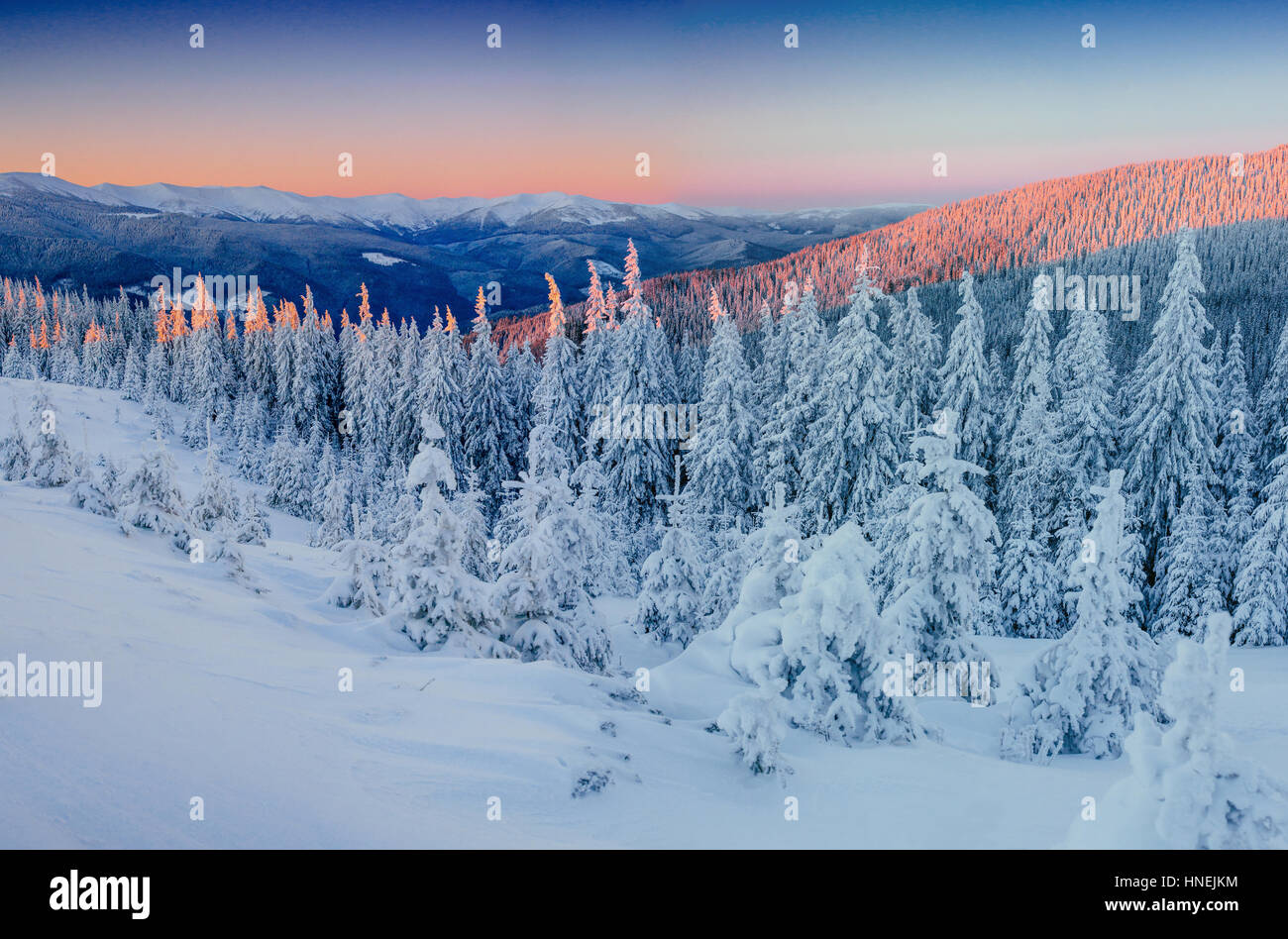 Fantastic winter landscape in the mountains. Magical sunset in a - Stock Image