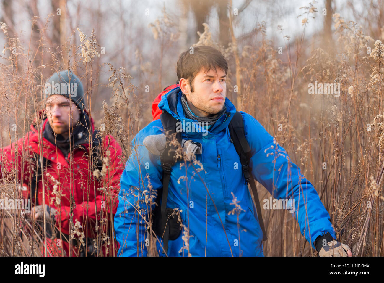 Young male hikers walking through field Stock Photo