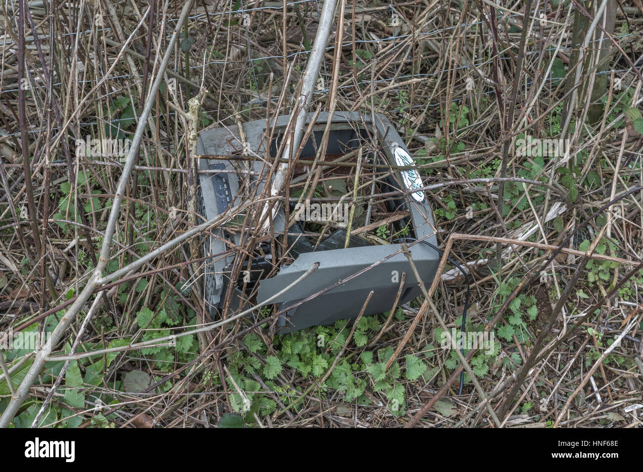 Environmental pollution in form or roadside and hedgerow rubbish discarded by the public. Fly tipping metaphor. - Stock Image