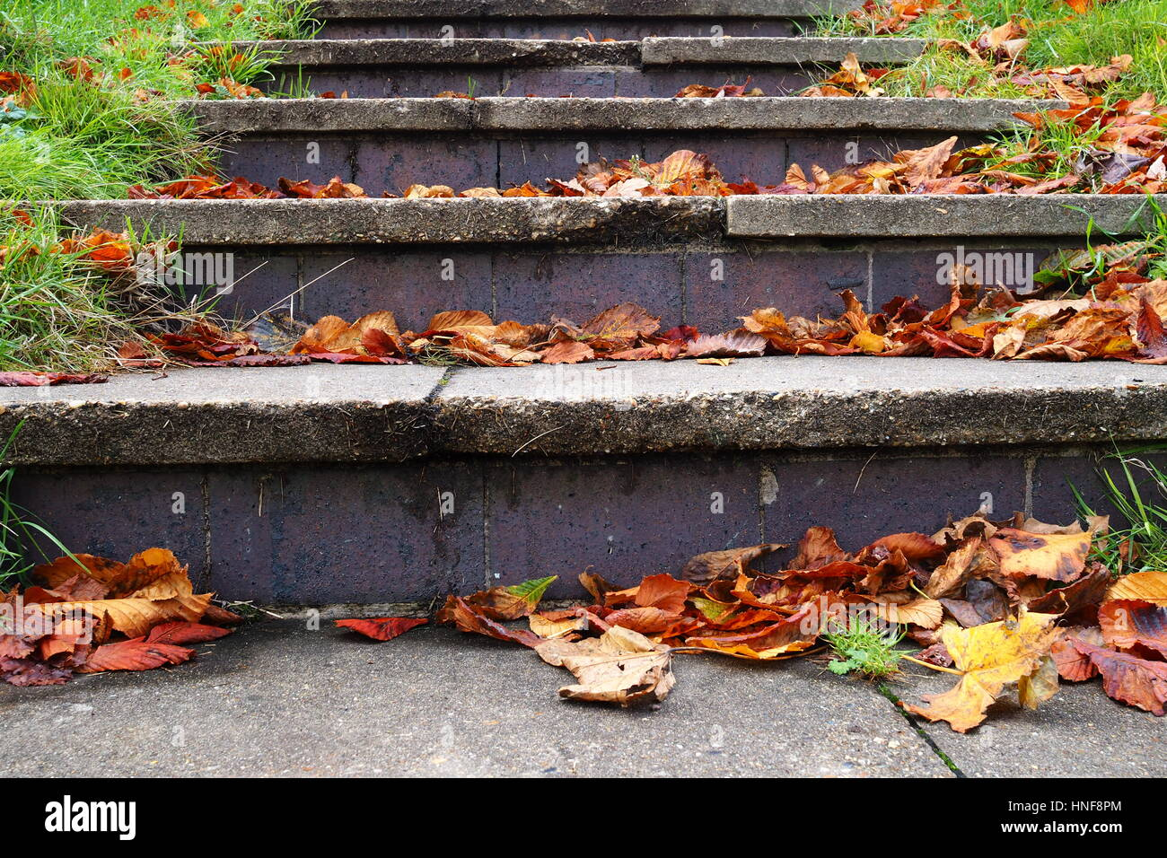Stairway made out of slabs - Stock Image