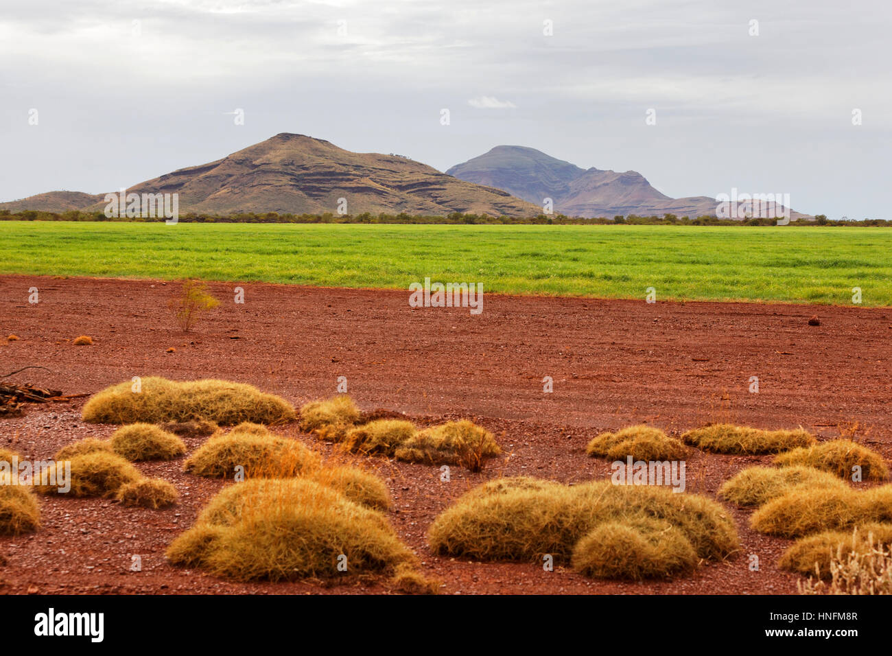 Hay growing in outback Australia for commercial purposes by Rio