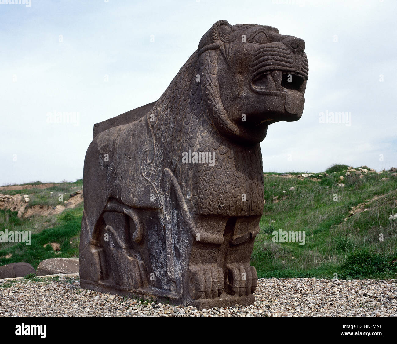 Colossal basalt lion. Ain Dara. Archaeological site. Syro-Hittite. Iron Age. 1300-740 BC. - Stock Image