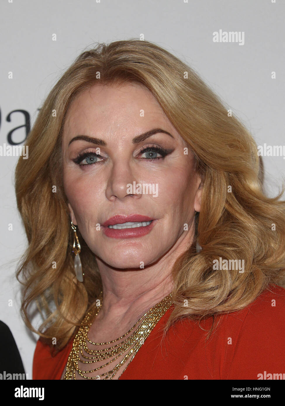 Pictures Shannon Tweed